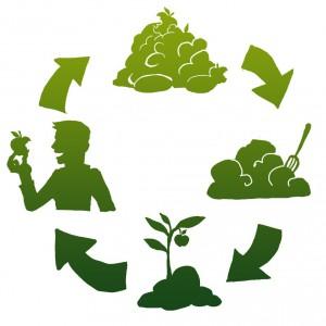 ako kompostujeme2